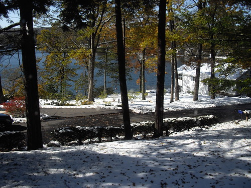 Foliage and more snow! by marlenegeary
