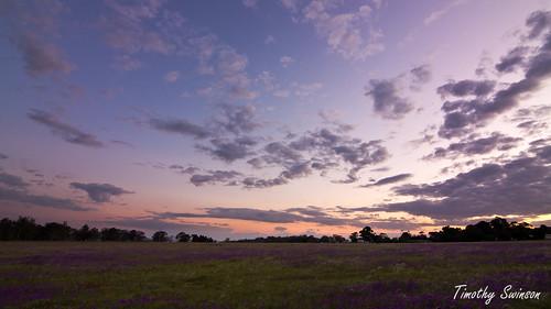 Sunset 04-11-11