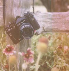 (des.i.ree) Tags: film 35mm polaroid 600 instant newest zenit slr680 addition 12xp