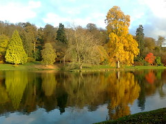 Stourhead Autumn reflections (SteveJM2009) Tags: uk november autumn trees lake water beauty leaves reflections landscape colours nt stourhead phonecamera wiltshire nationaltrust autumnal stevemaskell 2011 lakescape wilts explored naturethroughthelens nokiac2 nokiac201