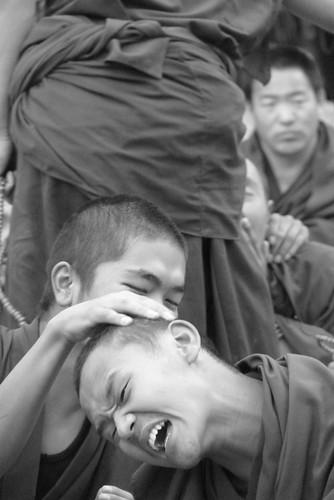 Tibet 242