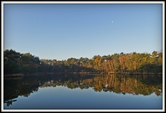 Meertjesven (Esther Crauwels) Tags: autumn trees moon reflection fall water netherlands forest pond bomen sony herfst nederland bos picnik ochtend reflectie waalre maan meertjesven