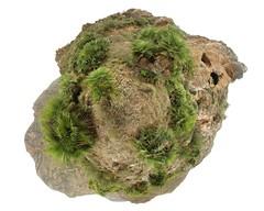 Palmito Planet (trebol_a) Tags: humilis planeta muela palmito hugin chamaerops miniplaneta bocaoria