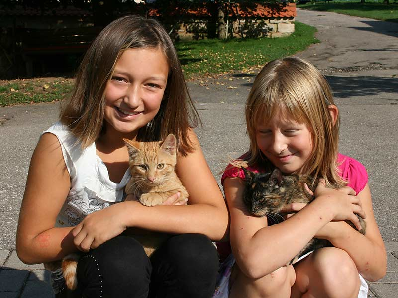 Kirschblütenhof - Kinder mit Katzen