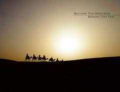 Beyond the horizon. Behind the sun. (mcancelliere) Tags: desert morocco marocco desierto marruecos camels deserto camellos camelli