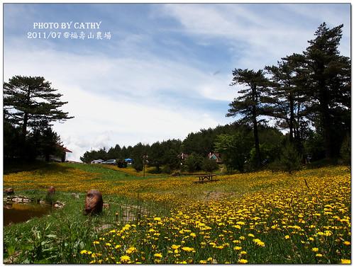福壽山農場-36