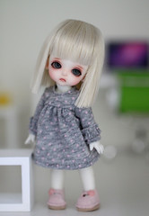 Puff (Aya_27) Tags: house cute bigeyes miniature doll special tiny belle bjd lovely custom dollfie hybrid dollie puki latidoll andreja faceup lati sadlook uniue pukipuki whitesp dressbymimi shortblondwig