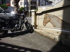 get a horse (glennbphoto) Tags: sanfrancisco horse motorcycle guesswheresf foundinsf smittyboy