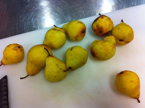 Bartlett pears for jam