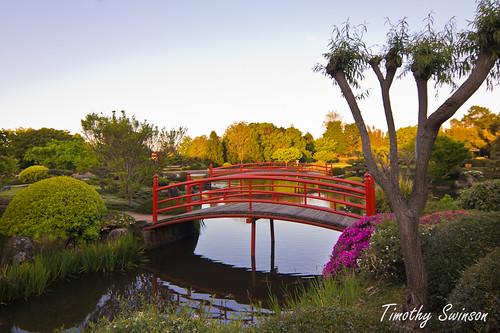 Toowoomba Japanese Gardens-1