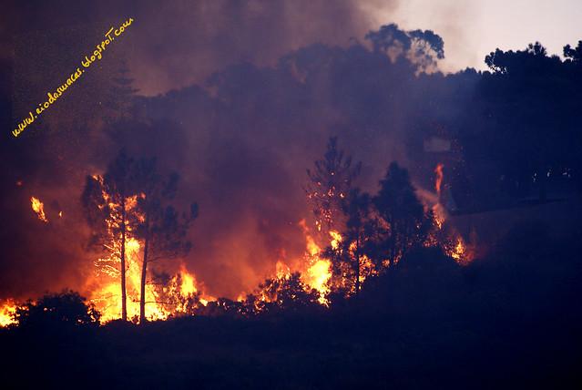 IncendioAzoia12102011e