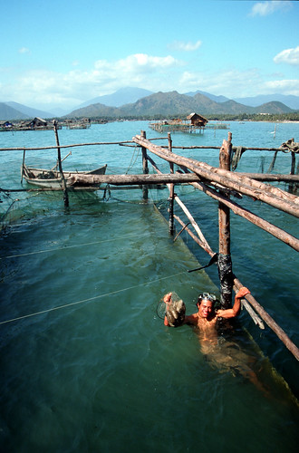 Sea cucumber farm, Rayner Nha Trang, Vietnam. Photo by Dominyk Lever, 2004