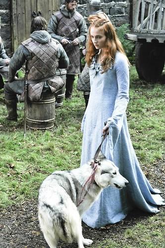 Sansa-Stark-sansa-stark-22943815-466-700