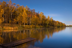 In the moonlight (nikolay_denisov) Tags: wood blue autumn trees light sky orange lake cold reflection tree green nature water beautiful yellow horizontal night rural river landscape outdoors gold boards pond woods nikon colorful exposure view natural russia outdoor moscow board north timeexposure 1750 moonlight birch wilderness russian tamron backwater syberia podolsk d90 smoothsurface