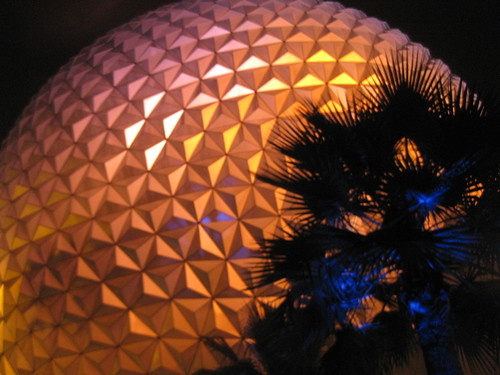 Palm trees and the geodesic dome at night.
