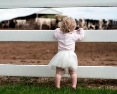 got milk? (spysgrandson--thanks for 2,000,000 views!) Tags: toddler child grandchild dairy littlegirlinpink musictomyeyeslevel1