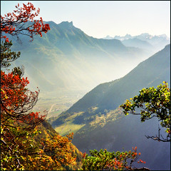 Autumn in the valley (Katarina 2353) Tags: travel autumn trees light sunset vacation mist mountain fall film nature beautiful fog t landscape photography golden switzerland nikon europa europe flickr day shadows view place image pics earth swiss places paisaje best hills most valley fields paysage priroda katarina levels sion valais viewed tjkp stefanovic derborence derborance pejza vertorama katarinastefanovic katarina2353 autumninthevalley mygearandme mygearandmepremium mygearandmebronze mygearandmesilver mygearandmegold mygearandmeplatinum gettylicence