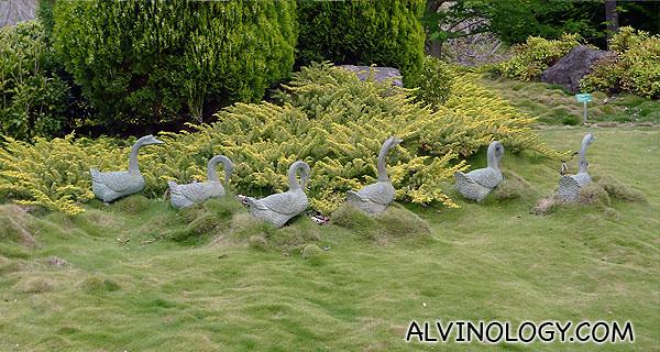 Cute little duck statues