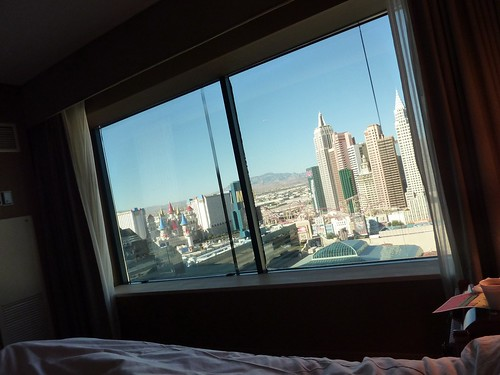 View from the MGM Grand