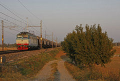 Prima di andare via... (paolo e186908 ARANCIO) Tags: merci rail cargo bahn treno tigre freight fs trenitalia cereali e652 tigrone tramogge monfer e652145