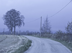 Lost Highway (CJsarp) Tags: road winter cold fall norway fog canon grey hilton eerie 5d late lonely 28 akershus 70200 klfta