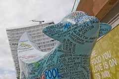 (AndrewCSQ) Tags: liverpool 2008 superlambanana capitalofculture wildinart