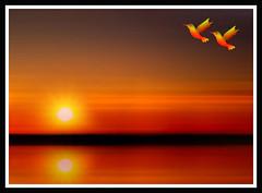 Sunset6 (Senior Graphic Designer) Tags: sunset sky sun art texture nature birds illustration digital painting design photo background creation