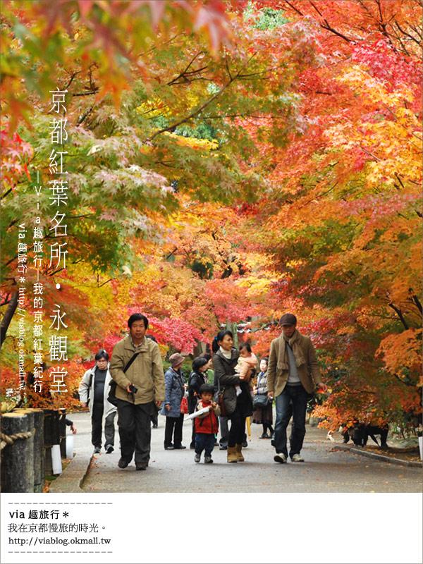 【京都賞楓】跟著Via賞楓趣*又見爆紅的美景~京都永觀堂
