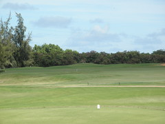 Turtle Bay Colf Course 278
