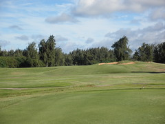 Turtle Bay Colf Course 332