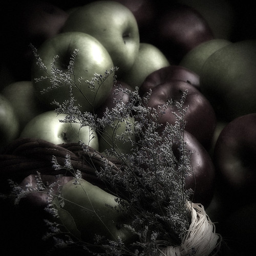 pomes / apples by vdorse