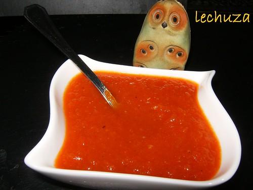 Salsa tomate verduras-salsa