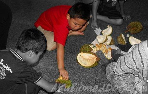 Adik beradik Koning kenduri Durian