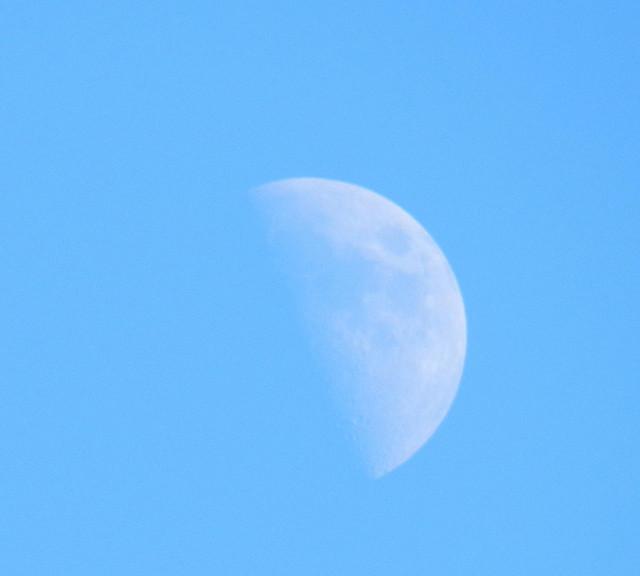 skywatchmDSCN1104