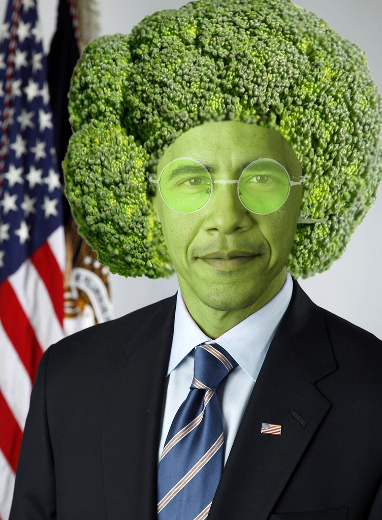 BROCCOLIBAMA