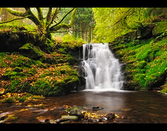 A Forgotten Falls (Steve-P2010) Tags: longexposure autumn fall nature water southwales woodland waterfall nationalpark moss woods october wideangle breconbeacons damp fallenleaves d300 talybont slowwater steveprice