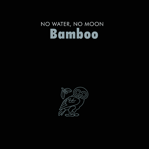 BAMBOO FINAL DIGIPAK COVER 1copy