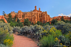 Red Canyon (Maurizio Fontana) Tags: california road park trees sunset red sea arizona sky panorama cliff parco usa cloud mountain lake color reflection tree water alberi clouds america sunrise trekking reflections river landscape lago mirror utah sand nikon gate strada tramonto nuvole mare nuvola desert alba sale united nevada fiume salt tunnel canyon trail american cielo bryce states navajo terra roccia albero acqua rosso colori riflessi paesaggi montagna uniti paesaggio deserto specchio sabbia parchi tufo riflesso d300 canion stati