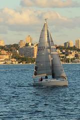 Boat (Baba Blue) Tags: water boot sailing sydney australia eos600d canonrebelt3i