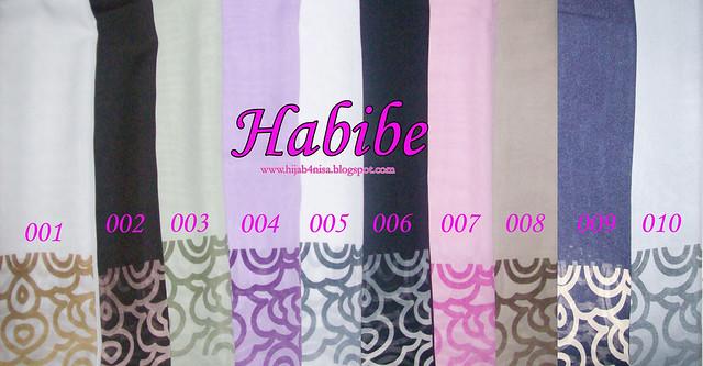 HABIBE2a