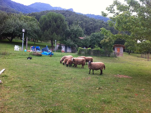 La Vall d'en Bas | Restaurant Sant Miquel | Cortadoras de césped