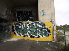 False (monolaps) Tags: graffiti nj atak false navy8