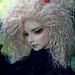 Dan Doll|IMG_5757_f1