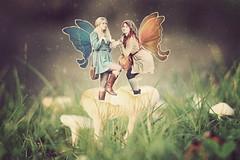 Mushroom Fairies (Linn-Maria) Tags: photoshop mushrooms manipulation fairies pixies cs3