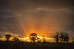 Sunrays (Keo6) Tags: trees clouds sunrays skt blinkagain bestofblinkwinners