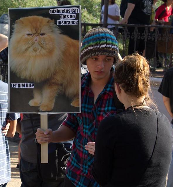 Sign Cat 2