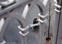 Solitude (Miriam Daepp) Tags: barcelona city urban london reflections germany switzerland losangeles citylife streetphotography istanbul lausanne venicebeach bern duesseldorf cityscenes gehryhouse gehryarchitecht