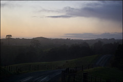 Sunrise over Whangarei countryside