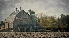 sugardale barn - minnesota (laughlinc) Tags: autumn fall texture field minnesota barn rural widescreen country harvest littlechicago nikond80 sugardale thechallengefactory laughlinc