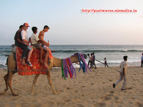Children enjoying camel ride on the sea beach puri